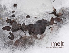 Melt (evaskoldwesterlind) Tags: fineartphotography snow