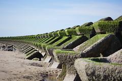 new brighton sea defences (davegore2005) Tags: newbrighton