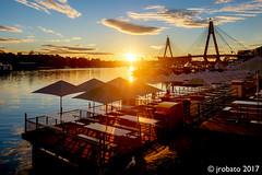 Sunset @ the Sydney Fish Market (orgazmo) Tags: landscapes sun sunsets sydney blackwattlebay sydneyfishmarket downunder australia newsouthwales nsw fujifilm fujix xpro2 xf1855mmf284ois fujinon