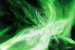 Aurora Abstract (josefrancisco.salgado) Tags: 1424mmf28g canada d5 nikkor nikon northernlights northwestterritories pontoonlake yellowknife astrofotografía astronomy astronomía astrophotography aurora auroraborealis aurorae auroras cielonocturno estrellas exposiciónlarga green longexposure multipleexposure night nightsky stars verde