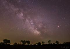 Milky Way (www.instagram.com/lizfoto_le_foto_di_liza) Tags: milkyway astronomy astrography longexposure longexpo astrophoto astrophotography székesfehérvár hungary tejút landscape nightphoto nightphotography starrynight starrysky stars astrophotos nightsky saturn antares nebula