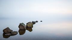 Milarrochy Stones (Willem Eelsing) Tags: milarrochy stones lochlomond scotland uk mist