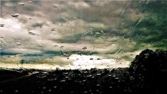 Attraverso il vetro bagnato del treno (pattyconsumilano) Tags: vetro finestrinobagnato wetglass