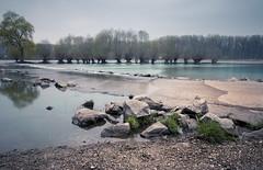 In den Rheinauen (Jana`s pics) Tags: rhein rhine wasser water natur nature fluss river steine stones outdoor hochwasser landschaft landscape