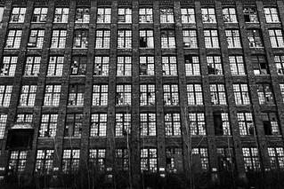 Windows and More Windows