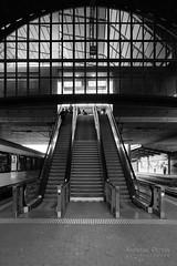 DSC09898_s (AndiP66) Tags: bahnhofbaselsbb bahnhof basel sbb trainstation architecture architektur schweiz switzerland blackandwhite schwarzweiss schwarz weiss black white monochrome sony sonyalpha 7markii 7ii 7m2 a7ii alpha ilce7m2 sonyfe28–70mmf35–56oss fe 28–70mm f35–56 sel2870 emount kitlens andreaspeters