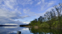 Am Tollensesee (Don Bello Photography) Tags: frühling 2017 tollensesee mecklenburgischeseenplatte kleinnemerow ufer reflektionen wolken himmel himmelsbilder weite panorama mecklenburg norddeutschland northerngermany panasonicphotographer panasonicfz1000 lumixphotographer lumixfz1000 fz1000 acdsee reinhardbellmann donbello donbellophotography 50favorites 1000views 100favorites 2000views 3000views 4000views sky 150favorites