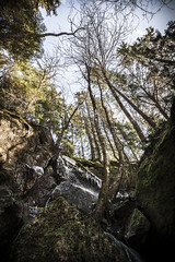 Early spring (Hen_rik) Tags: spring vår norway norge østfold spydeberg visitnorway visitindreostfold visitspydeberg trees watherfall stream forest outdoors canoneos1dsmarkiii canonphotography wideangel