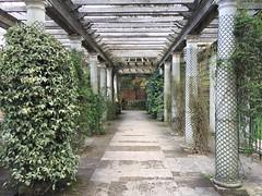 (eyair) Tags: ashmashashmash uk london england hampstead hampsteadheath pergola