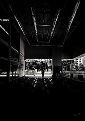 (Aaron Montilla) Tags: aaronmontilla 2017 blackwhite streetphotography fineart documentaryphoto outdoors minimalistphotography phonography floor cieling person dof iso200 backlight buldings glass reflex trees leaves windows blancoynegro fotodecalle fotografiacallejera fotografiadeautor fotografiadocumental exteriores fotografiaminimalista fonogrfia piso techo persona pdc contraluz edificios vidrio reflejo arboles hojas ventanas