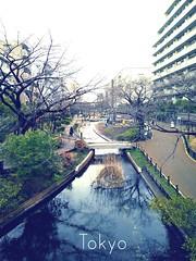 #今晚看明天行程才是旅行的意義  旅行不需要設定行程去綁住自己, 趕景點的事不必做, 隨意看、愜意走, 轉頭過去就是一個美麗畫面, 愈沒有期待,回憶就愈美, 會讓你講到80歲~  #travelphotography #trip✈️ #backpacker #Asakusa #Tokyo #Japan #旅遊543 #旅行是我的解藥 #東京 #淺草 (rickyguan6978) Tags: asakusa trip 淺草 tokyo japan 旅遊543 今晚看明天行程才是旅行的意義 travelphotography backpacker 旅行是我的解藥 東京