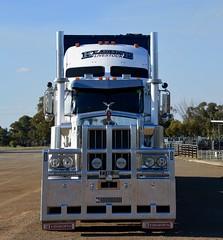 Kleine Livestock (quarterdeck888) Tags: trucks transport semi class8 overtheroad lorry heavyhaulage cartage haulage bigrig jerilderietrucks jerilderietruckphotos nikon d7100 frosty flickr quarterdeck quarterdeckphotos roadtransport highwaytrucks australiantransport australiantrucks aussietrucks heavyvehicle express expressfreight logistics freightmanagement outbacktrucks truckies kenworth c509 kenworthc509 60 squaretanks paintedtanks stockcrate bdouble bdoublestockcrate livestock livestocktransport cattle cattletransport cattlestockcrate kl kleine kleinelivestock