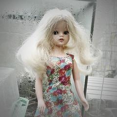 Sindy (Alkiyan) Tags: 1963 pedigree sindy doll poupée