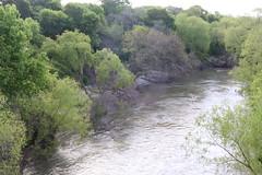 San Antonio River_6086 (gosdin) Tags: tceq wwtf cwa swqm sampling bacteria 303d