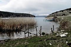 Lakeshore CSC_1336 (joanna papanikolaou) Tags: lake lakescape lakescenery landscape scape scene scenery scenic prespes macedonia greece shore lakeshore fishingboat outdoors nobody reeds nature travel exploration