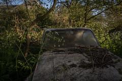DSC_4274 (Foto-Runner) Tags: urvbex lost decay abandonné épaves car voitures ferme