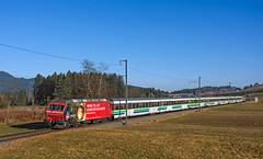 092 (maurizio messa) Tags: sob bt re456 schwyz vae2573 voralpenexpress sponsor werbe werbung pubblicità advertising nikond7100 mau bahn ferrovia treni trains railway railroad switzerland svizzera dts