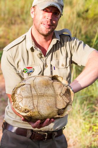 KrugerParkREIZ&HIGHRES-94