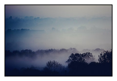 Foggy morning in Essex (The Ultimate Photographer) Tags: sunday morning foggy fog essex england blue valley tree spring sunny canon7dmarkii canon littlebaddow danbury uk white earlybird