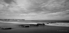 Nags Head Monochrome (John H Bowman) Tags: northcarolina outerbanks darecounty nagshead oceans atlanticocean surf beaches sandbeaches piers blueskywhiteclouds greatskies 6stopnd bw march2017 march 2017 sigma2414art explore