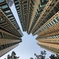 Tall building is tall #discoverhongkong