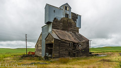 NT3.0033-CW1605618_38669 (LDELD) Tags: palouse pullman washington unitedstates us old abandoned agricultural building grainery fallingdown granary