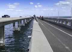 Excitement Of Bridge Fishing--Florida Keys (Denzil D) Tags: floridakeys florida bridgefishing fishing atlanticocean gulfofmexico iphonephoto water