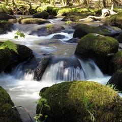 Rocks n falls (Karen Warren1) Tags: riverbovey river waterfall rocks rapids walk1000miles2017 walk1000miles worldinneedwalkersimplesitecom dartmoor