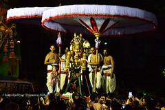 Sri Parthasarathy Temple - Brahmotsavam (Kapaliadiyar) Tags: kapaliadiyar parthasarathytempleutsavam parthasarathytemple