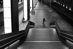 I am a passenger, revisited (marikoen) Tags: blackandwhite streetphotography antwerpen vlaanderen belgium be