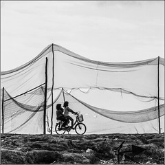 Cambodia : on the bank of the Tonlé Sap  lake (Hervé Marchand) Tags: 2017 cambodge tonlésap cambodian bicycle blackwhite noiretblanc children kids fishnet square siemreap