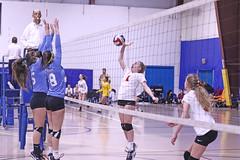IMG_1887 (SJH Foto) Tags: girls volleyball teen teenager team quickset storm u14s net battle spike block action shot jump midair