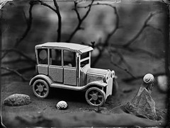 In the land of snails 1 (Nagy Krisztian) Tags: collodion wetplate 18x24cm alumitype