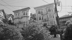 (sftrajan) Tags: russianhill sanfrancisco blackandwhite bw architecture greenstreet retainingwall regrade california