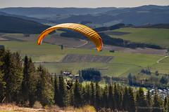 Olsberg - Paraglider (ribehrend) Tags: neuestichworte deutschland oslberg bruchhausen orte gleitschirmfliegen sport hochsauerlandkreis landschaft bruchhausersteine natur nordrheinwestfalen paragliding olsberg de