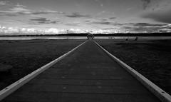 white lines (liebeslakritze) Tags: beach strand schwarzweis bw blackwhite anleger pier jetty ostsee falckenstein