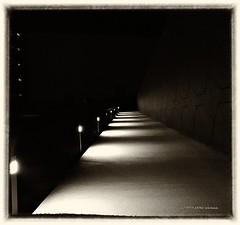Nachtgedanken (aNNa schramm) Tags: nachtaufnahme nacht night blackwhite black sepia stripes lichter light erl sw monochrome outdoor
