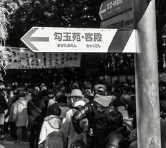 #streetphotography #streetstyle #nikon #nikonitalia ##nikon_photography #ph #phography #photography #photographer #photo #blackandwhite #bnw_vision #bnw_rose #bnw #bnw_captures #bnw_legit #magnumphotos #thesocietyphoto (penn.sara) Tags: blackandwhite nikon nikonitalia streetstyle bnwrose magnumphotos photography ph streetphotography bnw bnwvision phography photo bnwlegit bnwcaptures photographer thesocietyphoto nikonphotography