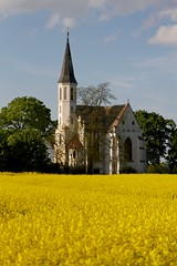 White church in yellow field 3 (Michael Tracy's photos) Tags: poland nyas