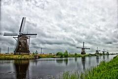 Day 141 - Kinderdijk II (William Adam) Tags: trees cloud windmill grass moody windmills powerlines kinderdijk cludy moodysky williamadam