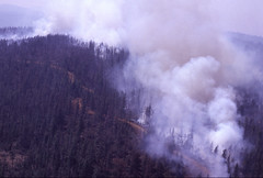 Wildfire in the Pacific Northwest (BLMOregon) Tags: oregon fire bureau management crew land fireman firemen firefighting firefighter firefighters wildfire blm wildfires
