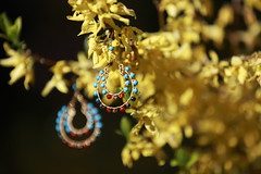 Earrings.... (Martins Skujans) Tags: uk blue light shadow red brown sunlight plant flower colour tree green nature yellow closeup bronze composition canon garden gold amber leaf wire bush focus raw day branch afternoon dof view bright blossom bokeh turquoise group beam bloom pro form earrings colourful curve shape jpeg bournemouth imagery 5dmarkiii canonef70200mmf28lisiiusm martinsskujans mark5diii