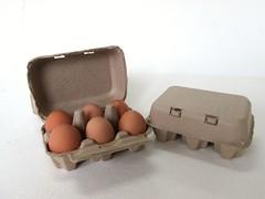 กล่องไข่กระดาษ pulp mold egg box-2