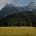 Caucasus 6