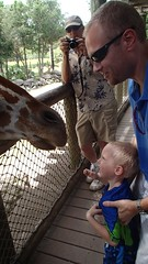 OLYMPUS DIGITAL CAMERA (drjeeeol) Tags: zoo grandpa will giraffe fav triplets fathersday toddlers chaz 2013 fathersday2013 57monthsold