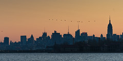 Dawn Flypast (glidergoth) Tags: usa ny newyork sailing harbour yacht manhattan nj