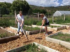 2013 Environmental Apprenticeship