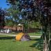 Camping Asturias segunda categoría: Los Sauces