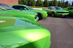 Green Dodge Challengers (scott597) Tags: walter green museum with bbq dodge multiple hemi chrysler envy rt srt8 challengers lxforums