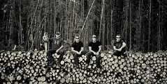 Fire Crew (pattyosullivan807) Tags: wood trees men forest fire saw ranger chainsaw logs logging guys brushing stack crew cutting lumber